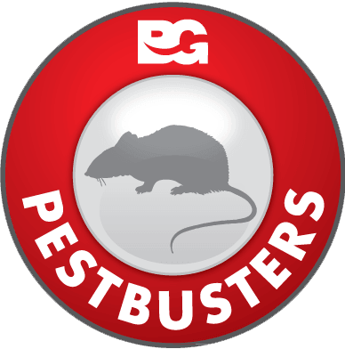 pest-buster