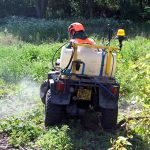Commercial Weed Control