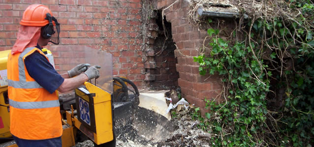 Stump Grinding & Removal Work